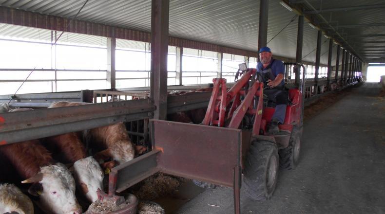 Landwirt Kobler bei der Fütterung